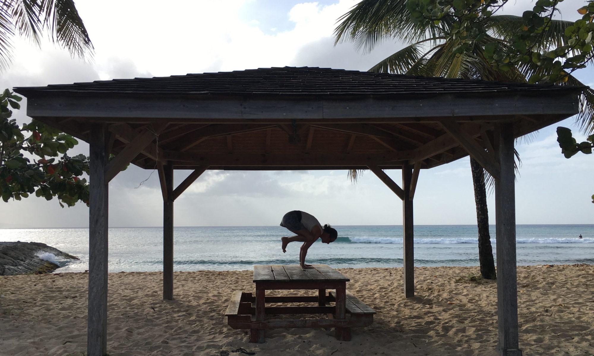 Kakasana sous les cocotiers